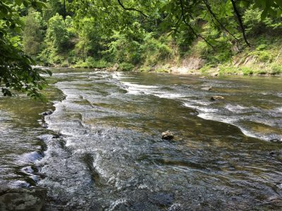 The Lifestyle Stream: The River tells many tales